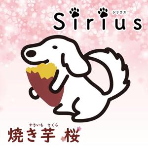 大須Sirius